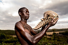 <p>Next week Leica Studio Mayfair will host the book launch and corresponding exhibition for the poignant seriesPhotographers Against Wildlife Crime.This collective body of work will feature a selection offine art gicléeprints produced with the team here Metro Imaging. Founded by Britta Jaschinski andKeith Wilson, Photographers Against Wildlife Crime™ are an international group of award-winning photographers [&hellip;]</p>